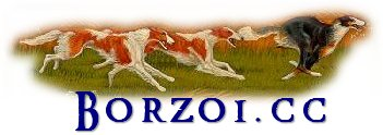 Borzoi.cc - information about the Borzoi breed